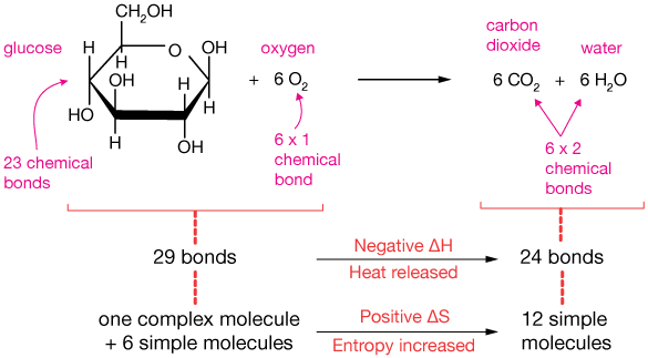an analysis of extracting energy from glucose Using glucose and sucrose as examples, figure 2 shows the  a stevia plant extract, now being  focused on the sugar/erythritol analysis of three energy/vitamin.