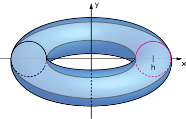 torus with disk inside