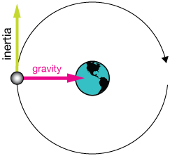 gravity and inertia in orbits