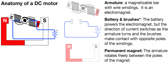 the commutator arrangement ensures that the polarity of the armature is  switched ever half turn of the motor